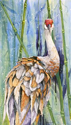 100-279 Sandhill crane production web.jpg