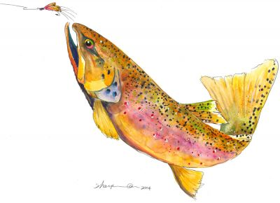 356 German brown trout 2004sm.jpg