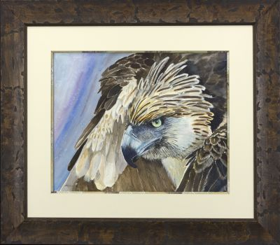 haribon eagle framed.jpg