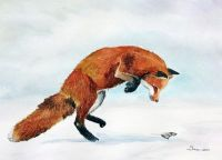 200-318 Fox and prey