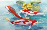 300-367 three koi and a lily