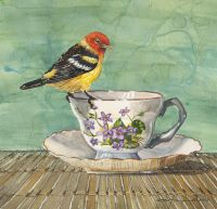 100-243 western tanager tea
